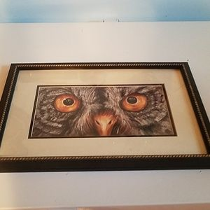 Great Grey Owl Picture 11x17